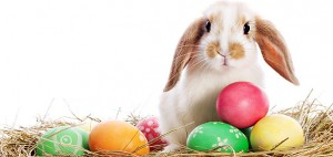 Cute-Happy-Easter-Photos